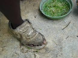 guinée chaussure